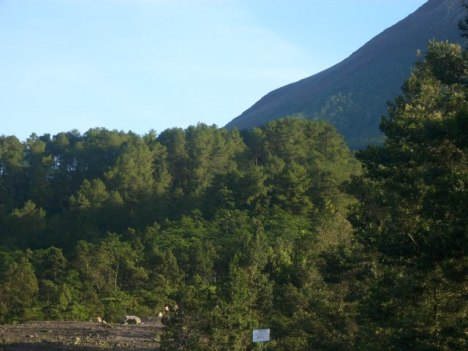 Kali Adem Gunung Merapi Kaliadem12