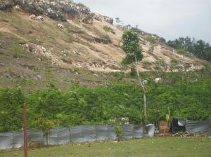 Penambangan Batu Kapur Di Gunungkidul Banyak Menimbulkan bukit Yang Gundul Pengerukan-gunung-5