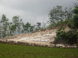 Penambangan Batu Kapur Di Gunungkidul Banyak Menimbulkan bukit Yang Gundul Tambang-batu-kapur-1