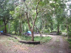 Foto-Foto Hutan Wisata Wanagama Playen Wanagama-27