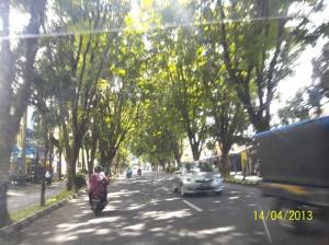 Gb,. Salah satu jalan kota Bantul dengan perindang