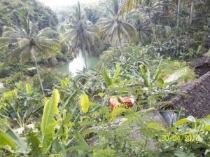 Gb. sungai Oyo menuju air terjun Sri Gethuk dilihat dari atas