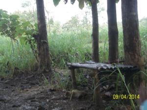 Gb. Lincak dari bambu