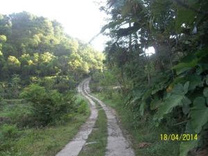 Gb. Jalan Cor Blok menuju pantai Pok Tunggal